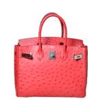 Hermès_Birkin_30_ostrich_rouge_vif_PL_2 Kopie