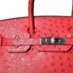 Hermès_Birkin_30_ostrich_rouge_vif_PL_3 Kopie