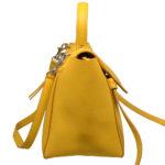 Celine_Handbag_Microbelt_yellow_leather_2 Kopie
