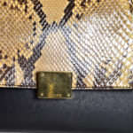 Celine_Trapez_Python_leather_black_beige_5 Kopie