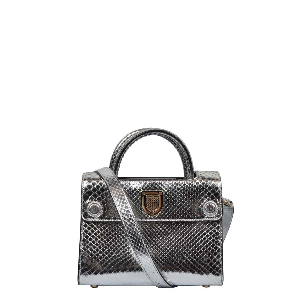 Dior Tasche Diorever Python Leder Silber Dior Bag Silver